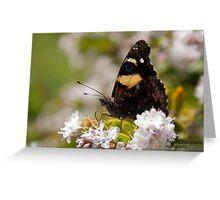 Getting Nectar Greeting Card