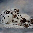 A Comfortable Spot by Anne Zoutsos