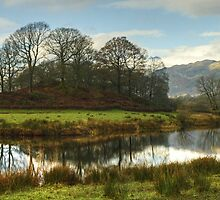 The Bend In The Brathay by Jamie  Green
