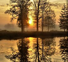Morning Sun Reflections by ienemien