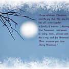 A Christmas Wish by Jane  mcainsh