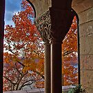 USA. New York. The Cloisters. by vadim19