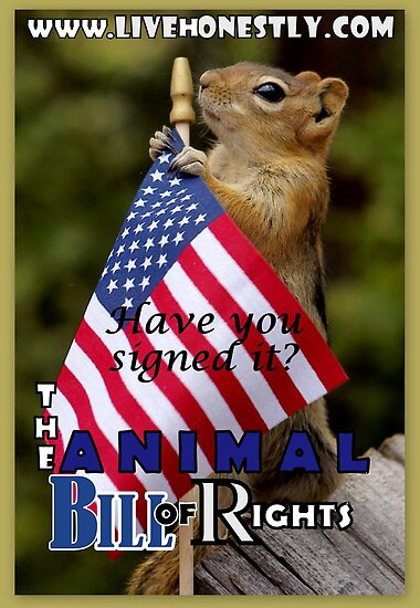 Animal Bill of Rights by Betsy  Seeton