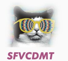 Swag Cat by SFVCDMT