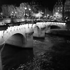 Evening Pont Neuf Bridge, Paris by Barbara Gray