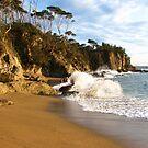 Casey's Beach by shortshooter-Al
