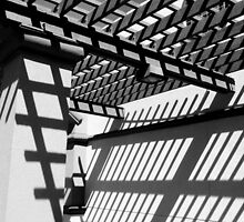 """"""" Arbor Shadows in Black and White """" by waddleudo"""