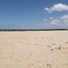 Altona Beach by Margaret Bonnes