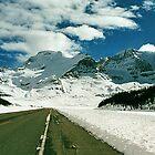 Icefields Parkway, Jasper National Park, Alberta, Canada by Adrian Paul