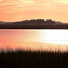 *James Island Marsh Sunset* by DeeZ (D L Honeycutt)