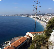 Wonderful view over the Baie des Anges by daffodil
