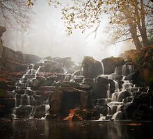 The Cascades, Virginia Water by Steve  Liptrot
