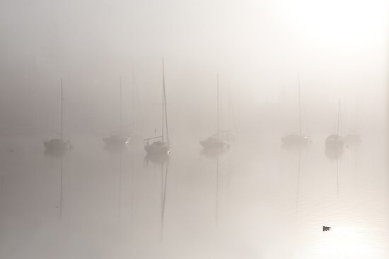 From out of the fog... by Gary Finnigan