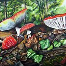 Magic Mushrooms by Peter Williams