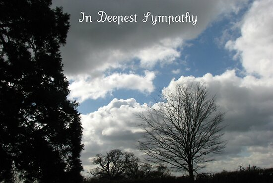 In Deepest Sympathy by BlueMoonRose