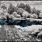 Summer Lake by Kym Howard