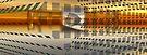 Coralita View #1 by Benedikt Amrhein