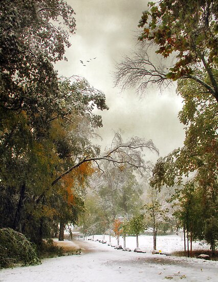 October Snow by Jessica Jenney