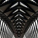 Symmetry, Lyon Airport, France by Andrew Jones