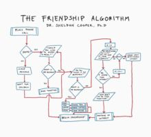Big Bang Theory - The Friendship Algorithm by Tiana Rapley