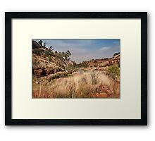 Tupul landscape, central Australia Framed Print