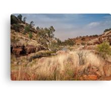 Tupul landscape, central Australia Canvas Print
