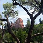 HIKING KOLOB by ArizonaSunday