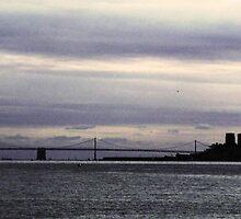 San Francisco Skyline by Lynn Bolt