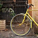 Italian Bicycle by johnnabrynn