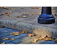Last Gasp of Autumn Photographic Print