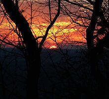Currahee Mountain Georgia by Zenia Gillespie