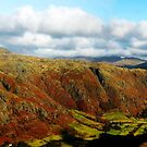 autumn in langdale by Ilapin