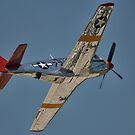 "P-51C Mustang ""INA The Macon Belle"" In Flight by Pirate77"