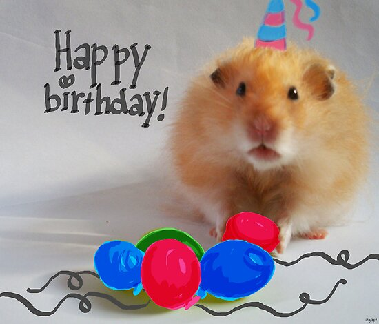 Happy Birthday Hamster by Nathalie van Bergen