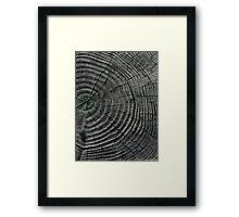 Wadsworth Framed Print