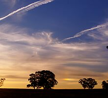 Contrails into the Sunset by David Hunt
