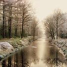 First Winter Signs by ienemien