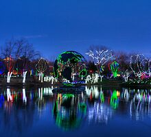 Wildlights at Columbus Zoo 2011 by QuietStreams