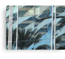 Palms in windows Canvas Print