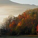 Whit A Bonny Mornin by Gary L   Suddath