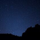 Zion Star Gazing  by thejourneysofar