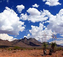 Organ Mountains by Ray Chiarello
