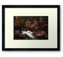 Laurel Creek Cascades Framed Print