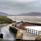 East Beach, Lyme Regis by lynn carter