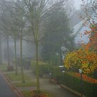 November Mist by Gilberte