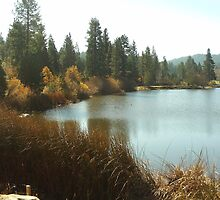 Grass Valley Lake In The San Bernardno Mountains by Bearie23