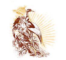 lady bird 2 Photographic Print