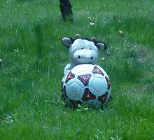 Moo Moo playing soccer by Joseph Green
