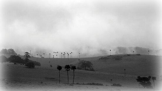 Jerrara Vista by Masterclass