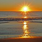 (Another) Salvo Sunrise by Robin Lee